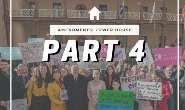 Abortion Law Reform Act 2019 – Lower House Amendments